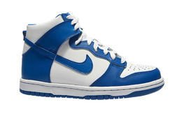 Nike Dunk High (GS)  (308319-125)